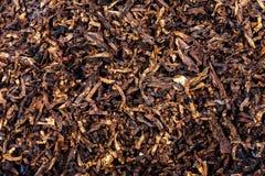 Tobacco texture background Stock Photo
