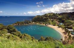 Tobago ö - den Parlatuvier fjärden - karibiskt hav Arkivbilder