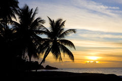 Tobago. Sunset over Caribbean Sea, Turtle Beach, Tobago Stock Images