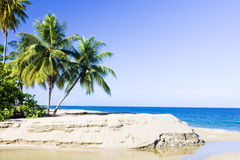 Tobago. Western coast of Tobago, Caribbean Stock Photo