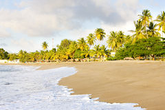 Tobago. Turtle Beach in Tobago, Caribbean Stock Photo
