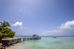 Tobago Beach. Best of Tobago island in Caribbean Royalty Free Stock Images