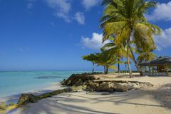 Tobago beach, Caribbean. View of Pigeon point beach, Tobago Royalty Free Stock Photography