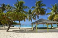 Tobago beach, Caribbean Royalty Free Stock Images