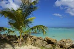 Tobago beach, Caribbean Stock Photo