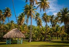 Tobago Royalty Free Stock Photography