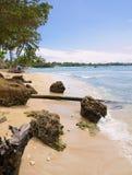 Tobago - MT Irvinebaai - Tropisch strand van Caraïbische overzees Royalty-vrije Stock Foto's