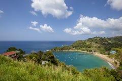 Tobago-Strand Stockfoto