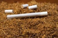 tobak Royaltyfri Bild