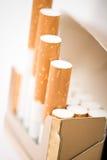 Tobak i cigaretter med ett brunt filter Royaltyfri Foto