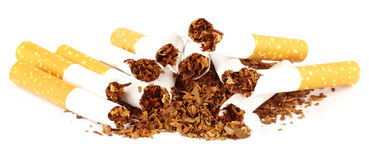 Tobak med den sönderrivna cigaretten Arkivbilder