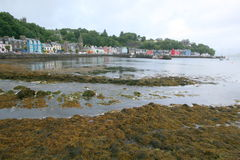 Tobermory harbour on Isle of Mull Stock Photo