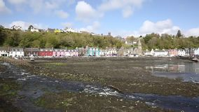Tobermory harbour Isle of Mull Scotland uk pan in spring fine weather stock video footage