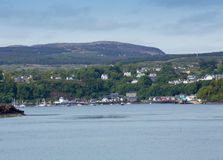 Tobermory Harbour Mull Stock Image