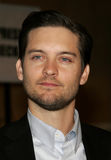 Tobey Maguire stock photography