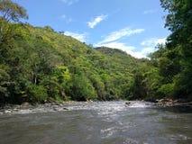 Tobia ` s rzeki Zdjęcie Royalty Free