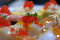 Tobiko or flying fish roe over the Engawa sushi royalty free stock photo