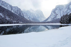 Toblach lake. Mountains and trees reflected on the Toblach lake Royalty Free Stock Photos