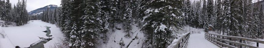 Toby Creek Bridge no Columbia Britânica canadá Foto de Stock Royalty Free