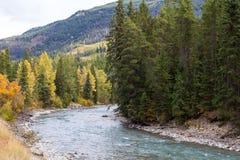 Toby Creek cerca del panorama A.C. Imágenes de archivo libres de regalías