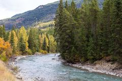 Toby Creek near Panorama BC Royalty Free Stock Images