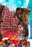 Tocón de árbol ardiente en día escarchado del invierno Foto de archivo libre de regalías