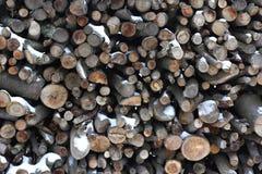 Fondo del tocón de árbol imagen de archivo libre de regalías