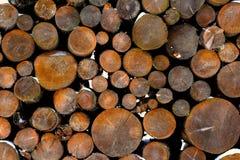 Fondo del tocón de árbol imagenes de archivo