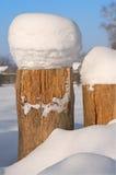 Tocón de árbol cubierto en nieve. Imágenes de archivo libres de regalías
