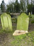 Tocón de árbol en el cementerio Imagen de archivo