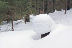 Tocón de árbol en nieve profunda en un bosque en invierno Imágenes de archivo libres de regalías