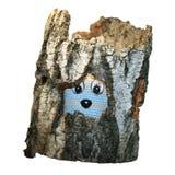 Tocón de árbol putrefacto vacío y un juguete Fotos de archivo libres de regalías