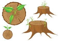 Tocón de árbol y lanzamiento de la planta verde, vector ilustración del vector