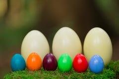 Tocón 10 de los huevos de Pascua Fotos de archivo
