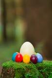 Tocón 12 de los huevos de Pascua Fotos de archivo libres de regalías