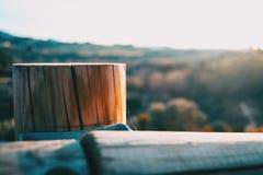 Tocón de madera con una luz de la puesta del sol Foto de archivo