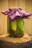 Tocón de madera conservado en vinagre tarro de los pepinos Fotos de archivo libres de regalías