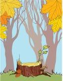 Tocón en el fondo del otoño Fotos de archivo libres de regalías