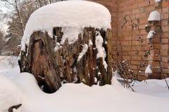 Tocón grande del invierno a lo largo de la pared de ladrillo Fotografía de archivo libre de regalías