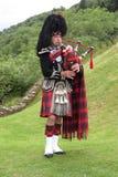 Tocador de gaita-de-foles escocês Fotografia de Stock Royalty Free