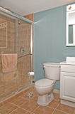 Tocador del cuarto de baño y parada de ducha imágenes de archivo libres de regalías