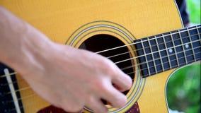 Tocar la guitarra ac?stica en el parque metrajes