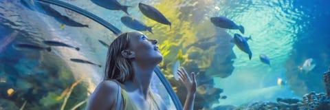 Tocchi della giovane donna un pesce di stingray in un'INSEGNA del tunnel di oceanarium, FORMATO LUNGO fotografia stock libera da diritti