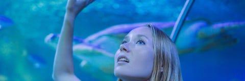Tocchi della giovane donna un pesce di stingray in un'INSEGNA del tunnel di oceanarium, FORMATO LUNGO immagine stock