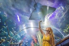 Tocchi della giovane donna un pesce di stingray in un tunnel di oceanarium fotografie stock