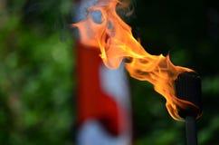 Tocha de mnanipulação do fogo Foto de Stock Royalty Free