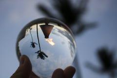 Tocha e bola de vidro abstrata recolhida palmeiras fotografia de stock