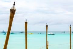 Tochas amarelas no mar tropical azul, ilha de Filipinas Boracay fotografia de stock