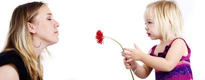 Tochter, die ihrer Mutter eine Blume gibt Lizenzfreie Stockbilder