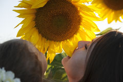 Tochter und Mutter mit Sonnenblumen Stockbilder
